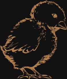 kurczak wielkanocny
